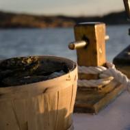 En skål musslor står i fören på en båt ute till havs